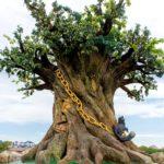 Аквапарк «Акваленд «У Лукоморья», дуб зеленый и златая цепь и кот ученый