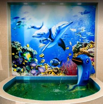 Dolphin Karaganda